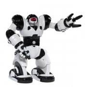 Радиоуправляемые игрушки, игрушки роботы