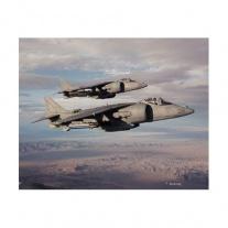 04038 Авианосный самолет вертикального взлета AV-8 Harrier, масш