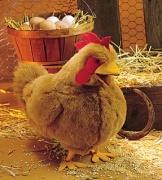 2106 Мягкая игрушка Красная курица, 38см Folkmanis (Фолкманис)
