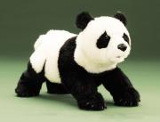 2364 Мягкая игрушка Панда маленькая 36см Folkmanis