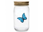 4011957 Бабочка в банке: Голубой Морфо